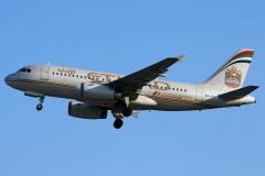 a6-eie-etihad-airways-airbus-a319-132