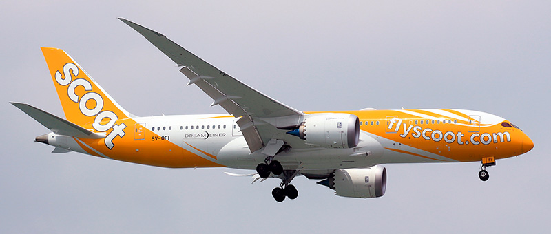 Boeing 787-8 Scoot Airlines. Photos and description of the plane