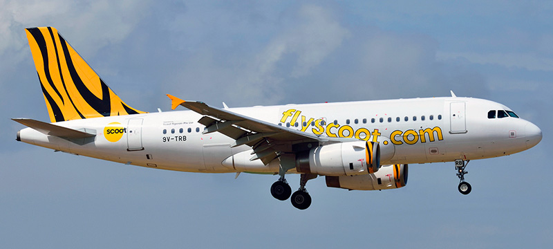 Airbus A319-100 Scoot Airlines. Photos and description of the plane