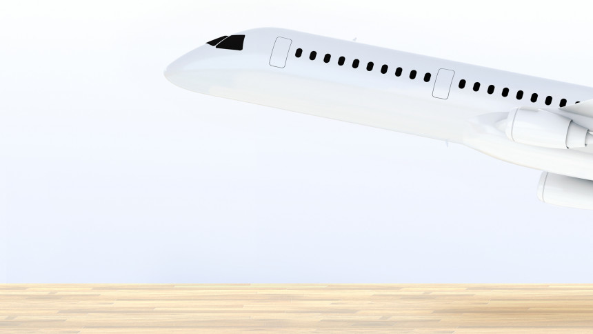 Airplanes made of bamboo will be manufactured in France